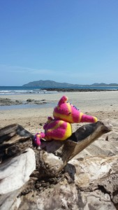 Spent time on Tamarindo beach too.