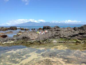 Napili Bay, definitely our favorite beach.