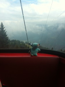 It was a bit rainy in Switzerland, so only this little guy wanted to go out in the tram up the mountain in Chur, Switzerland.