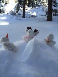 Mia's Poekies, Raspberry, Snowie, and Blizzard in Tahoe!